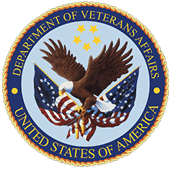 Workplace facilitation participant - Dept of Veteran Affairs